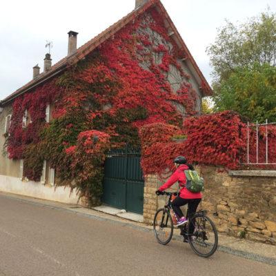 France_2016_cyclist